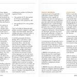 edicao-29-fev-2013-fire-custom-shop-pagina-02